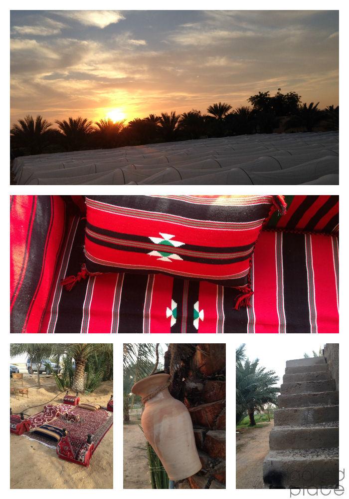 AlKitby_farm_AlAin_UAE