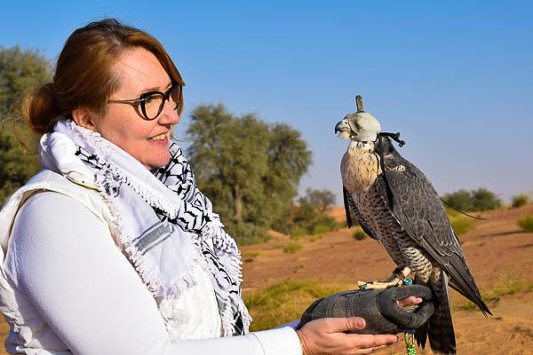 Unseen Trails Dubai - Falconry