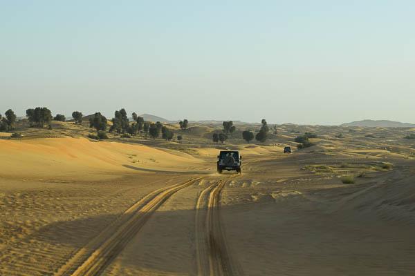 Unseen Trails Dubai safari